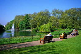 We have helped maintain Hyde Park in London
